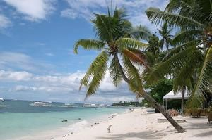TripBucket - We want You to DREAM BIG! | Dream: Visit Panglao Island, Philippines