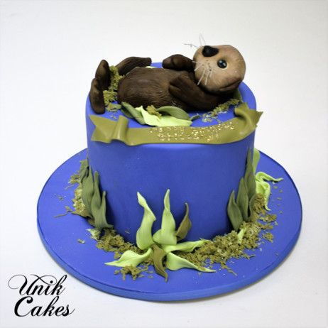 OTTER BIRTHDAY CAKE Ladies Cakes Pinterest Otters Birthday