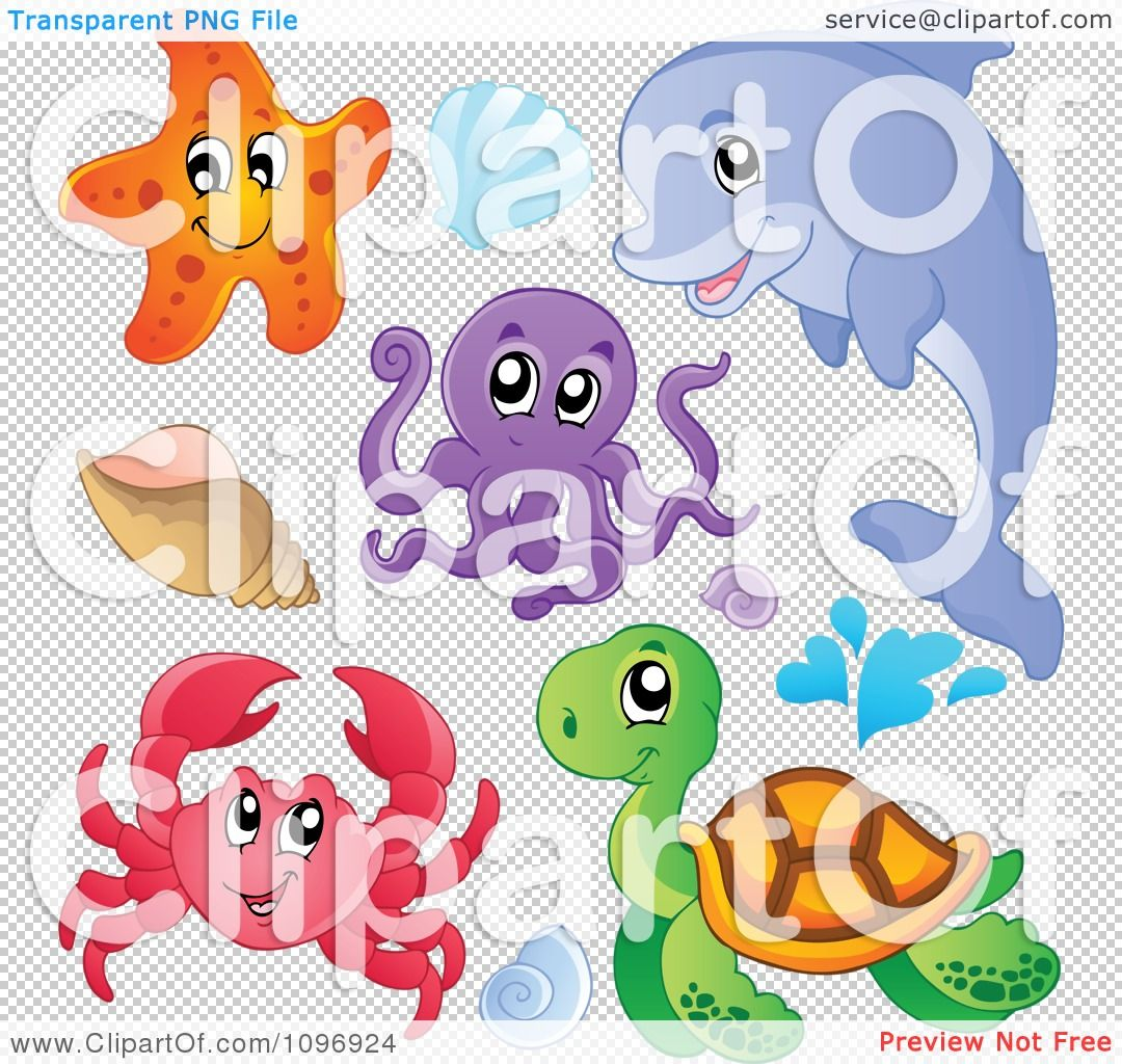 Clipart Cute Starfish Dolphin Octopus Crab Sea Turtle And Shells Royalty Free Vector Illustration B Free Vector Illustration Vector Illustration Illustration