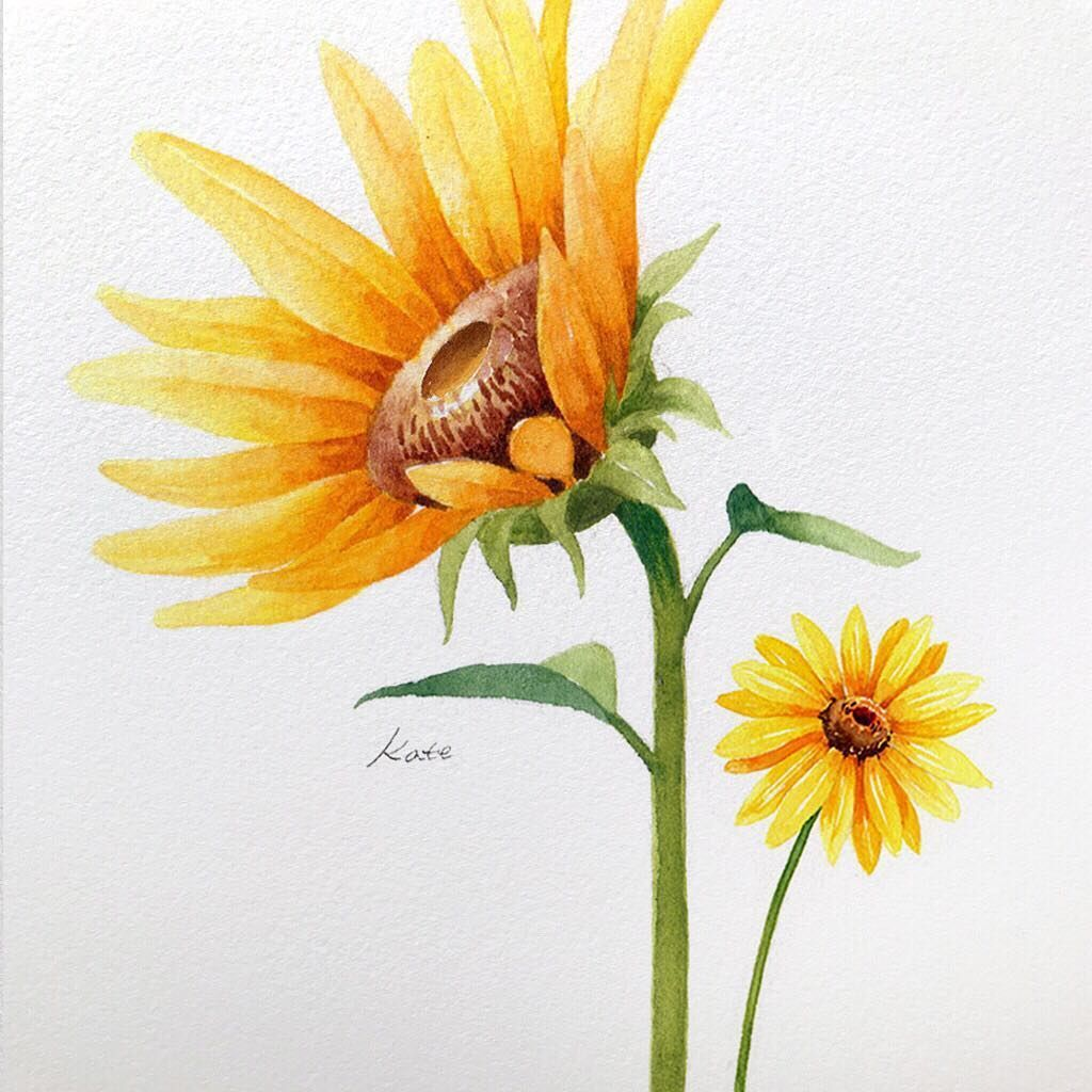 The perfect sunflower 🌻 by 👩🎨 Kate Kyehyun Park of IG