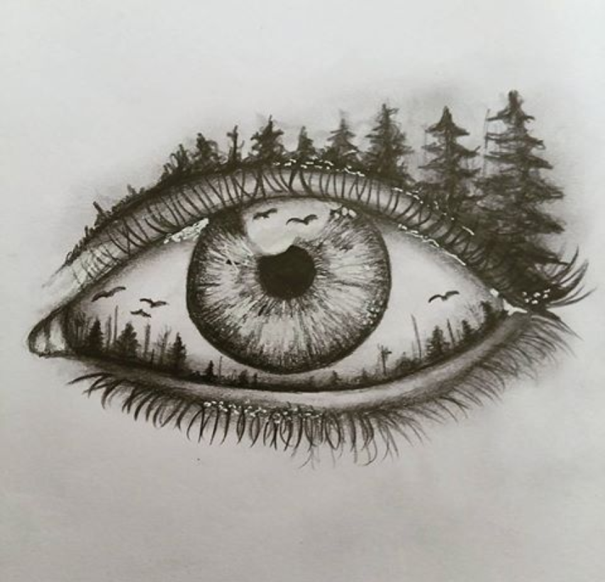 Scribble Eyes Drawing : Another beautiful drawing of an eye foresteye sketch