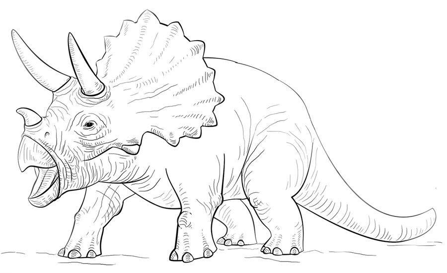 Triceratops Ausmalbilder Ausmalbilder Triceratops Zeichnung Dinosaurier Ausmalbilder Ausmalen