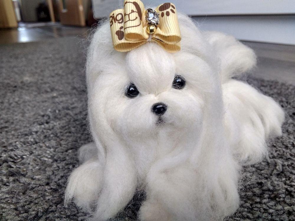 Ooak Needle Felted Maltese Puppy Dog Dolls Bears Bears