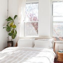 Color Search | Apartment Therapy