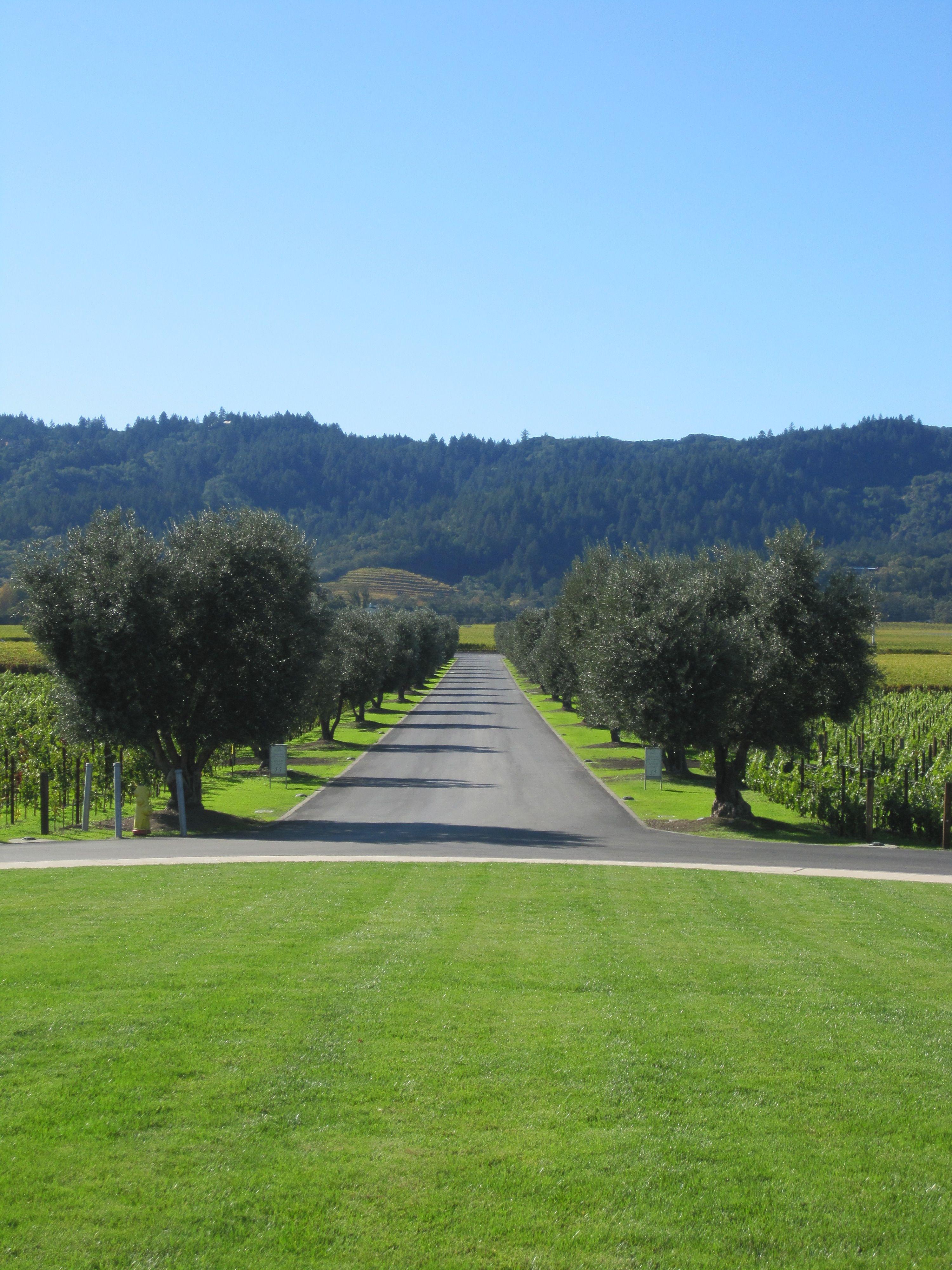 Opus One Winery Entrance In Napa Valley Wine Vineyards Favorite Wine Winery