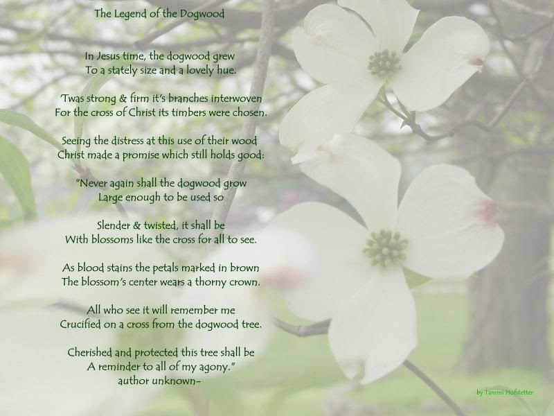 photo regarding Legend of the Dogwood Tree Printable identify Pin upon Aspects that contact my centre