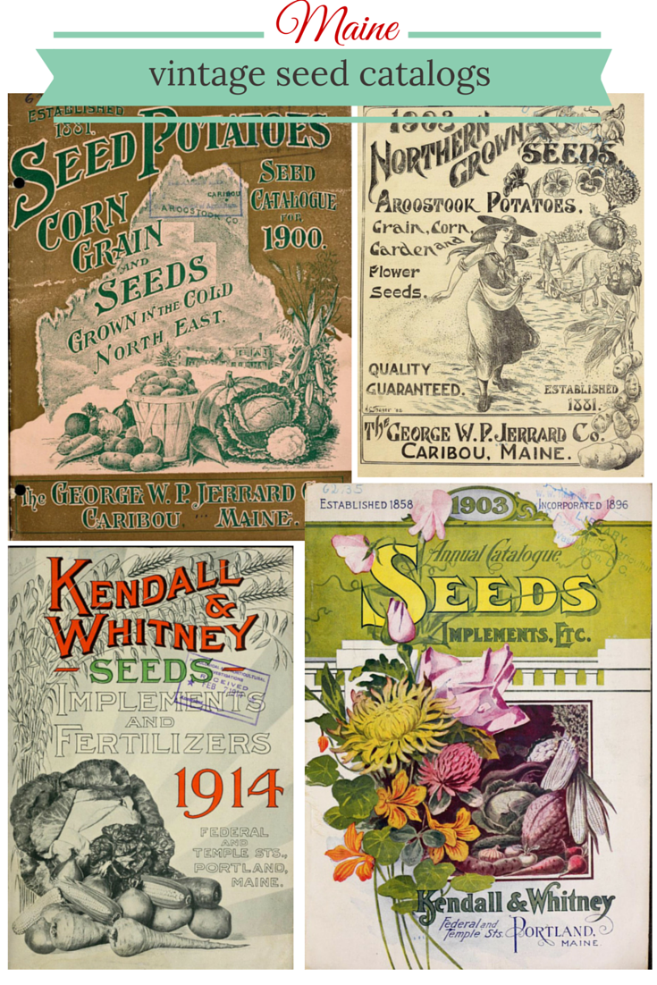 Find A Treasure Trove Of Old Maine Seed Catalogs Online