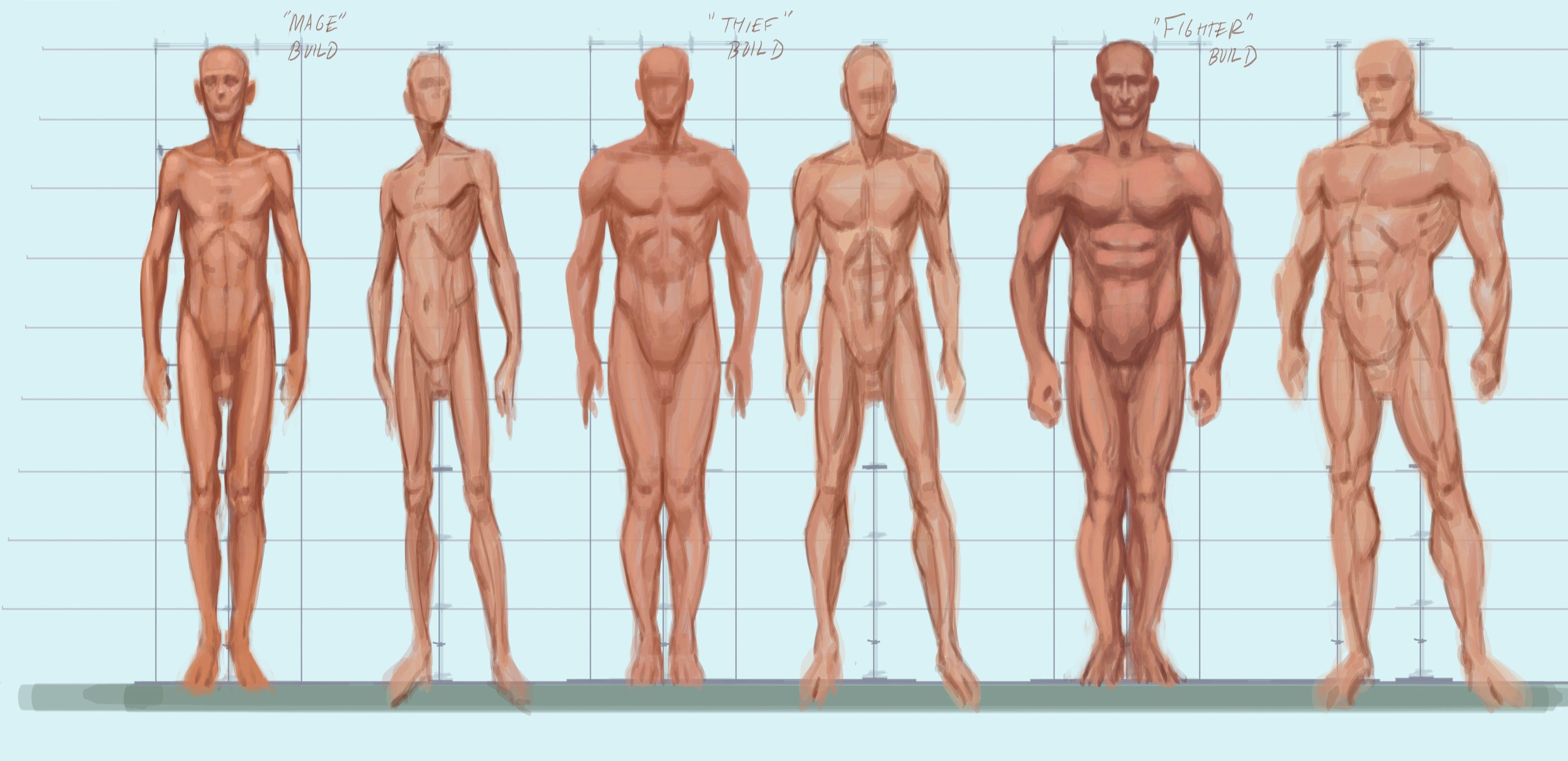 Body Types Male | Figure Drawing | Pinterest | Artworks, Elder ...