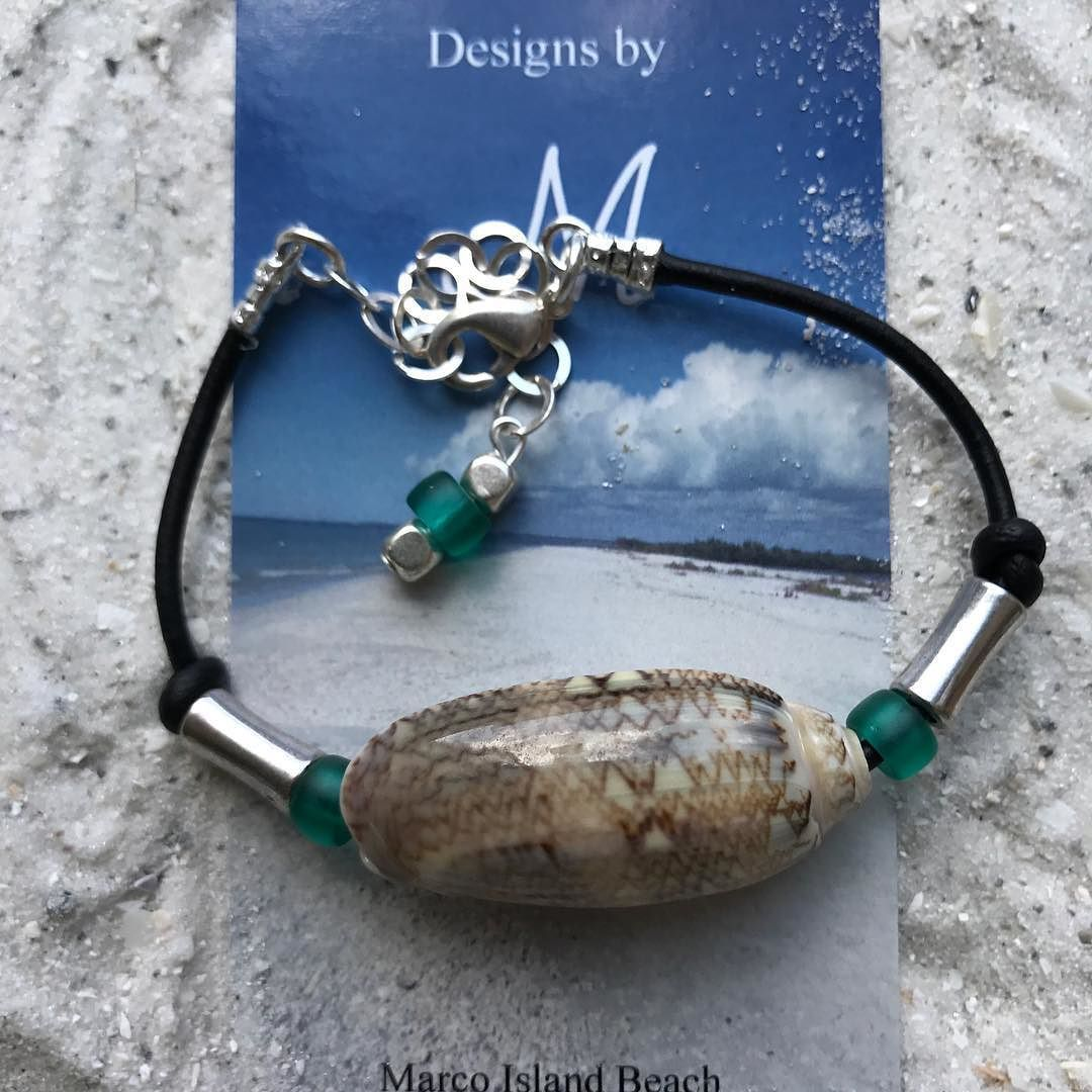 I find Olive shells on Marco Island and create jewelry...they are ...