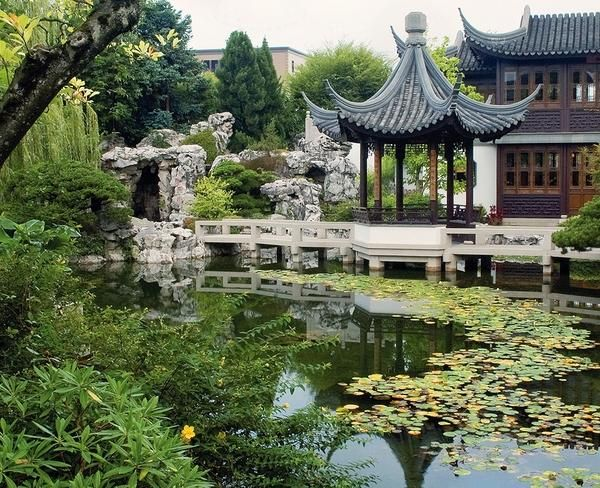 Chinese Garden Pond Bridge Pagoda Water Plants
