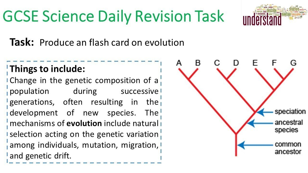 Gcse Science Daily Revision Task 139 Gcse Science Science Daily Gcse Science Revision