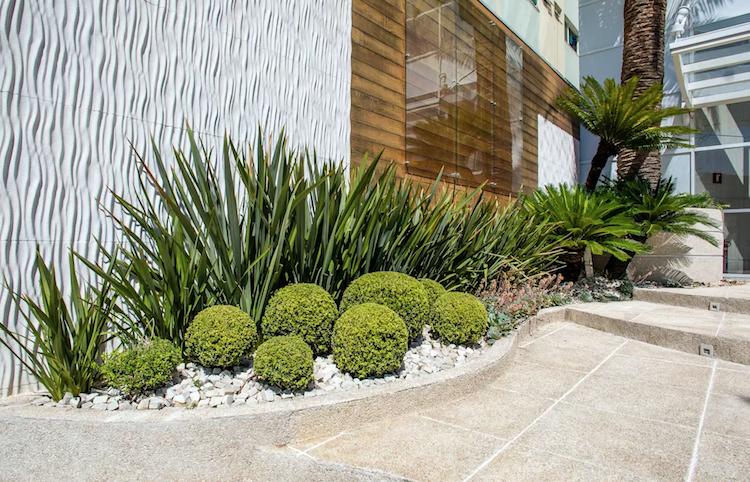 Idee Amenagement Jardin Devant Maison Moderne Parterre Buis Boule Plantes Vertes Gr Amenagement Jardin Devant Maison Idee Amenagement Jardin Amenagement Jardin