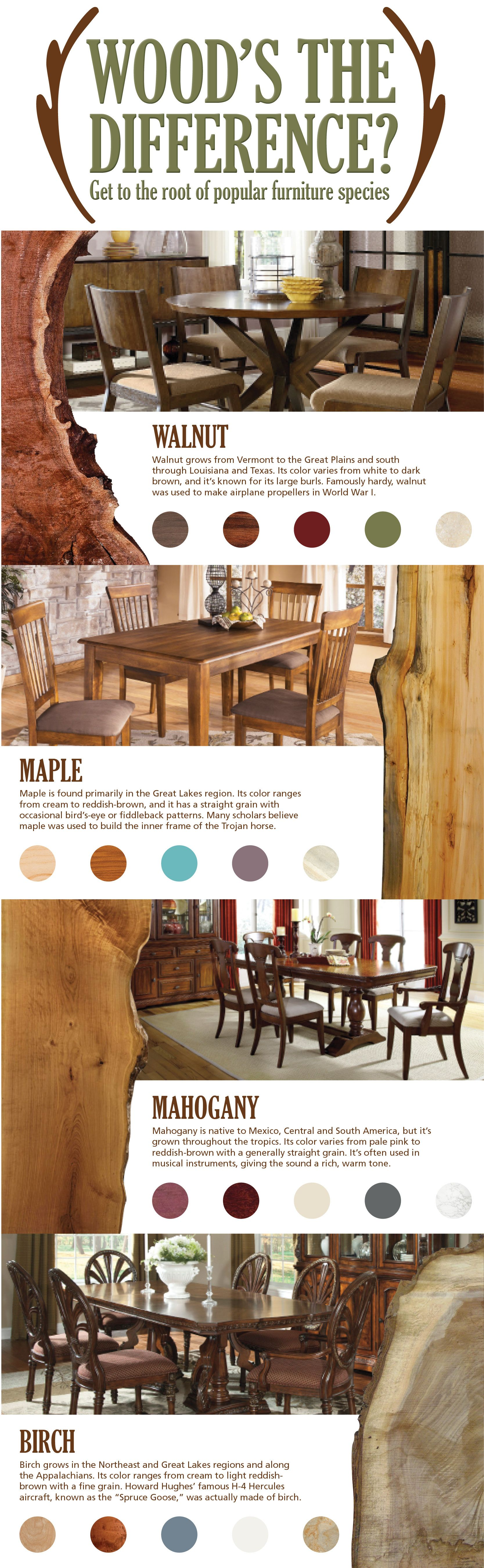 Infographic Know Your Wood Types Hm Etc Types Of Wood Wood Wood Furniture