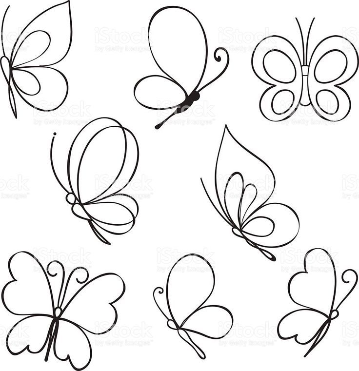 Photo of Vector Set of hand drawn butterflies