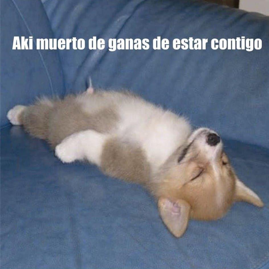 #PISTIS #llorar #alegria #feliz #passion #fitness #mexico #ecomerce #ventas #compras #internet #meme...