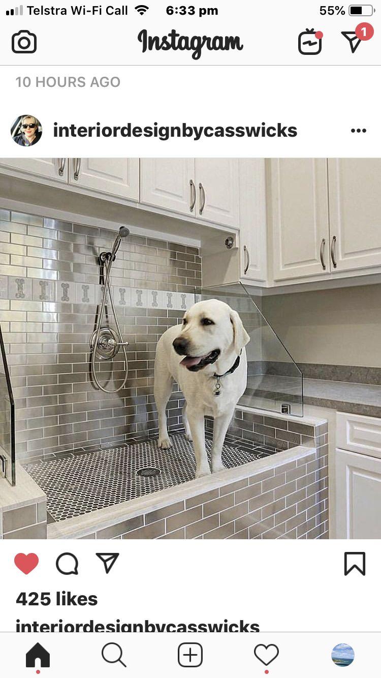 Pin By Elxan Abbasov On Constr Su Qaz Isiq With Images Dog Wash Custom Homes Custom Dog