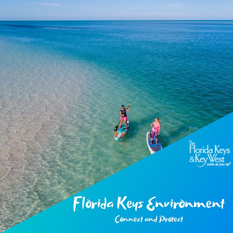 Key West Florida Keys Islands Bucket List 45 Best Things To Do Florida Keys Islands Key West Vacations Travel Key West