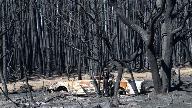 Australia fires A visual guide to the bushfire crisis