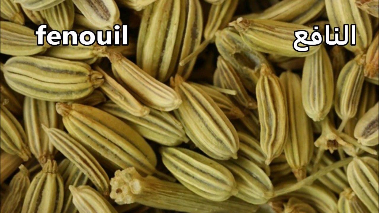 أسماء الاعشاب و الثوابل باللغتبن الفرنسية و العربية Natural Remedies Herbs Fruit