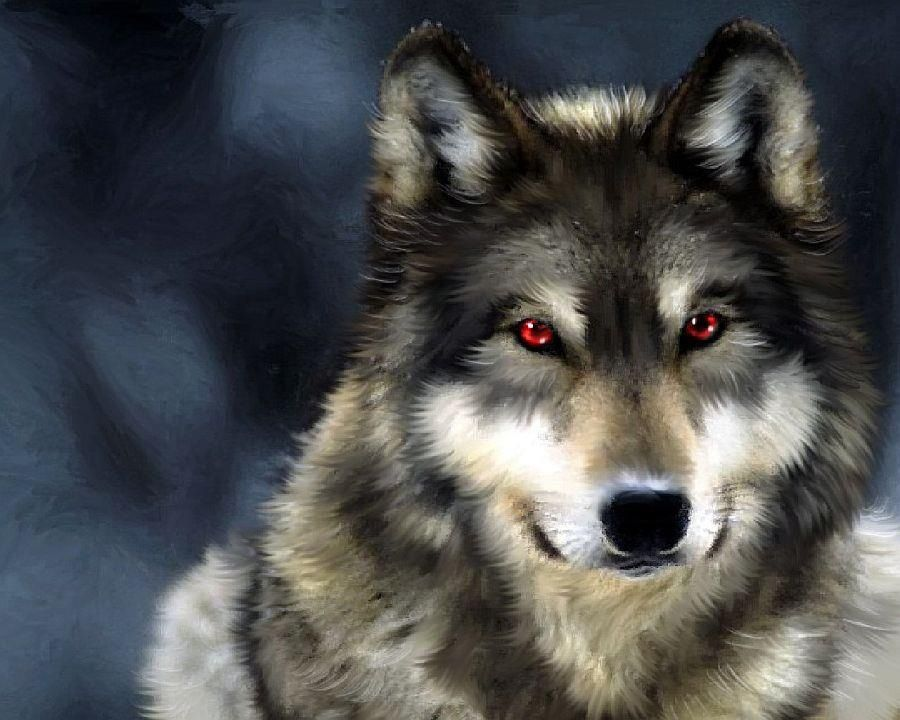 Red eyes | Wolves | Pinterest | Fantasy creatures, Red eyes and Wolf