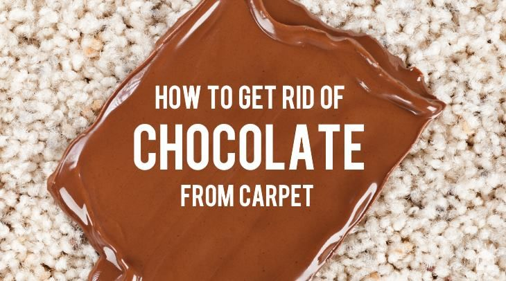 How To Get Chocolate Out Of Carpet Chocolate Stains Baking Soda On Carpet Stain Remover Carpet