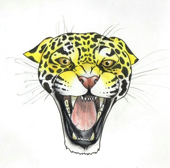 jaguar drawing