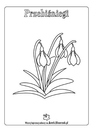 Przebisniegi Pierwsze Zwiastuny Wiosny Kolorowanka Antek Sluszczak Home Decor Decals Cards Paper Crafts