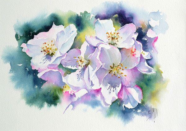 Fleurs De Pommier Joel Simon Peintures Florales Fleurs De