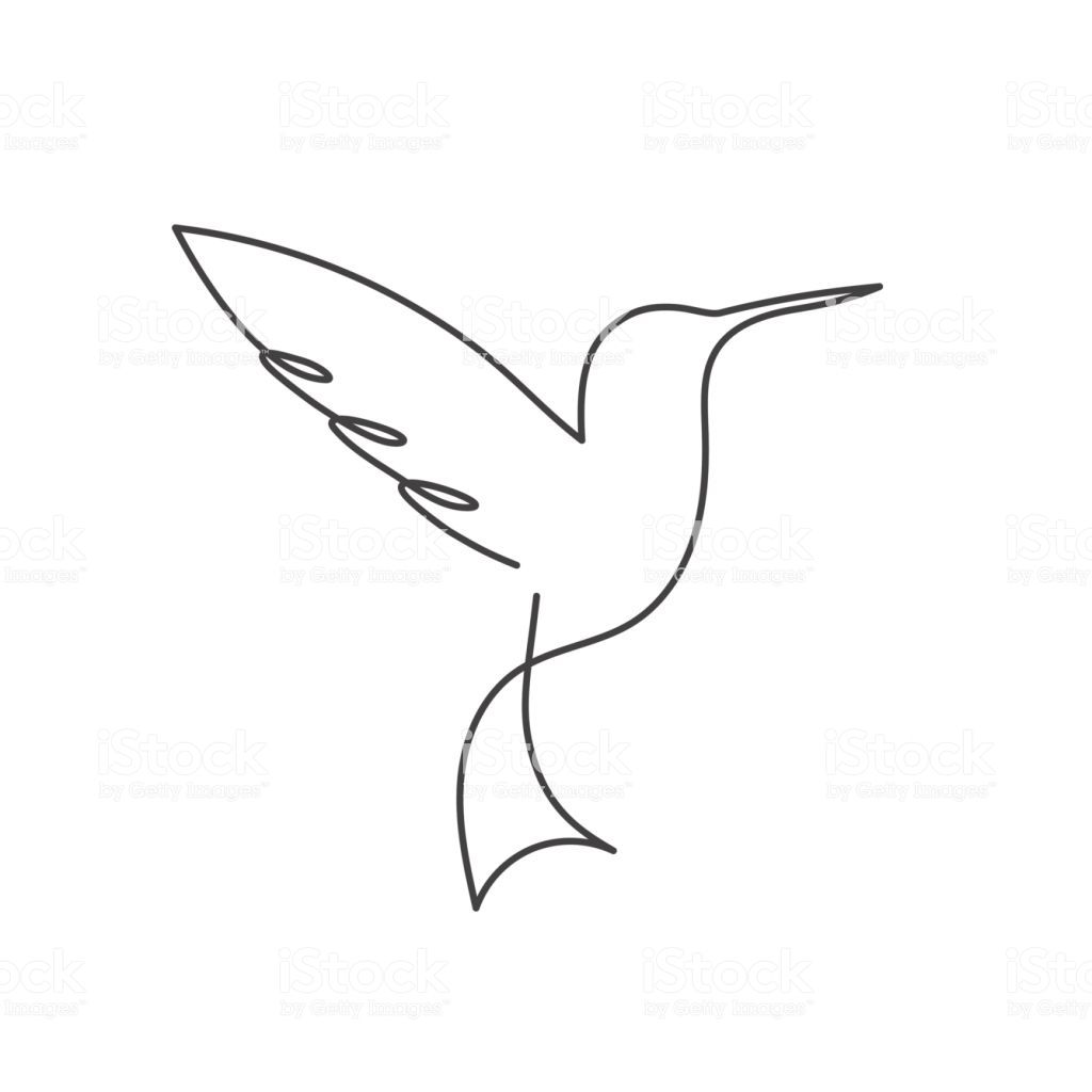Continuous line bird. Black and white vector illustration. One line...