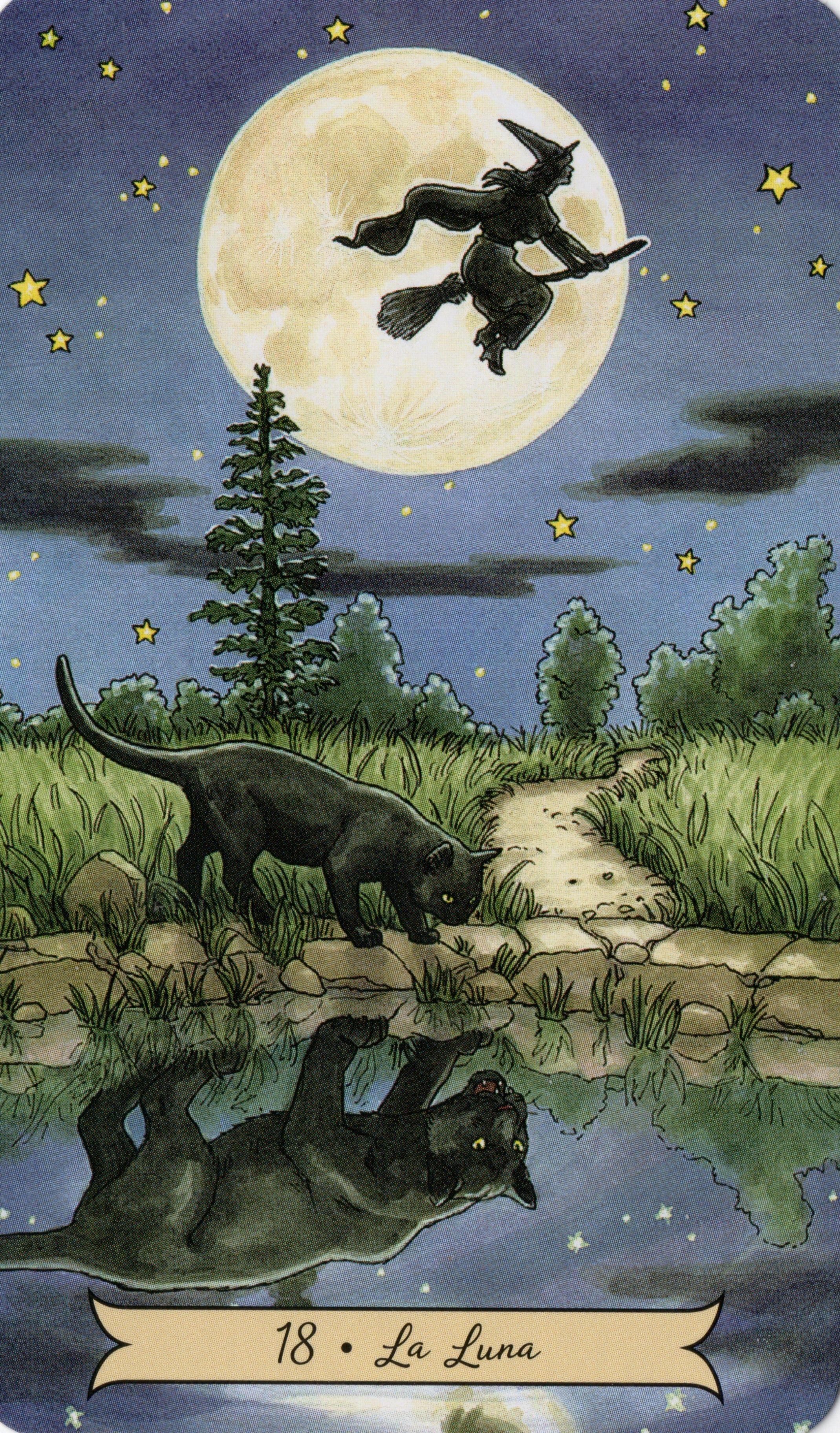 La Luna Bruja Dibujo Tarot Tarot Cartas