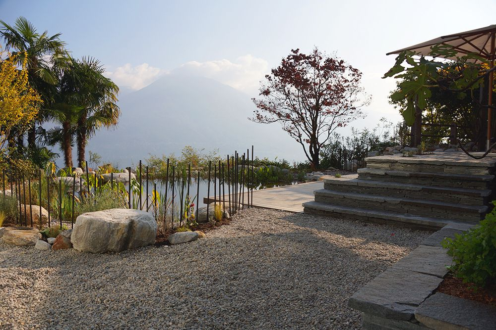 Simple Aussicht auf einen Schwimmteich mit Bergkulisse im Hintergrund mediterrane Stimmung im Garten Salamander Naturgartengestaltung