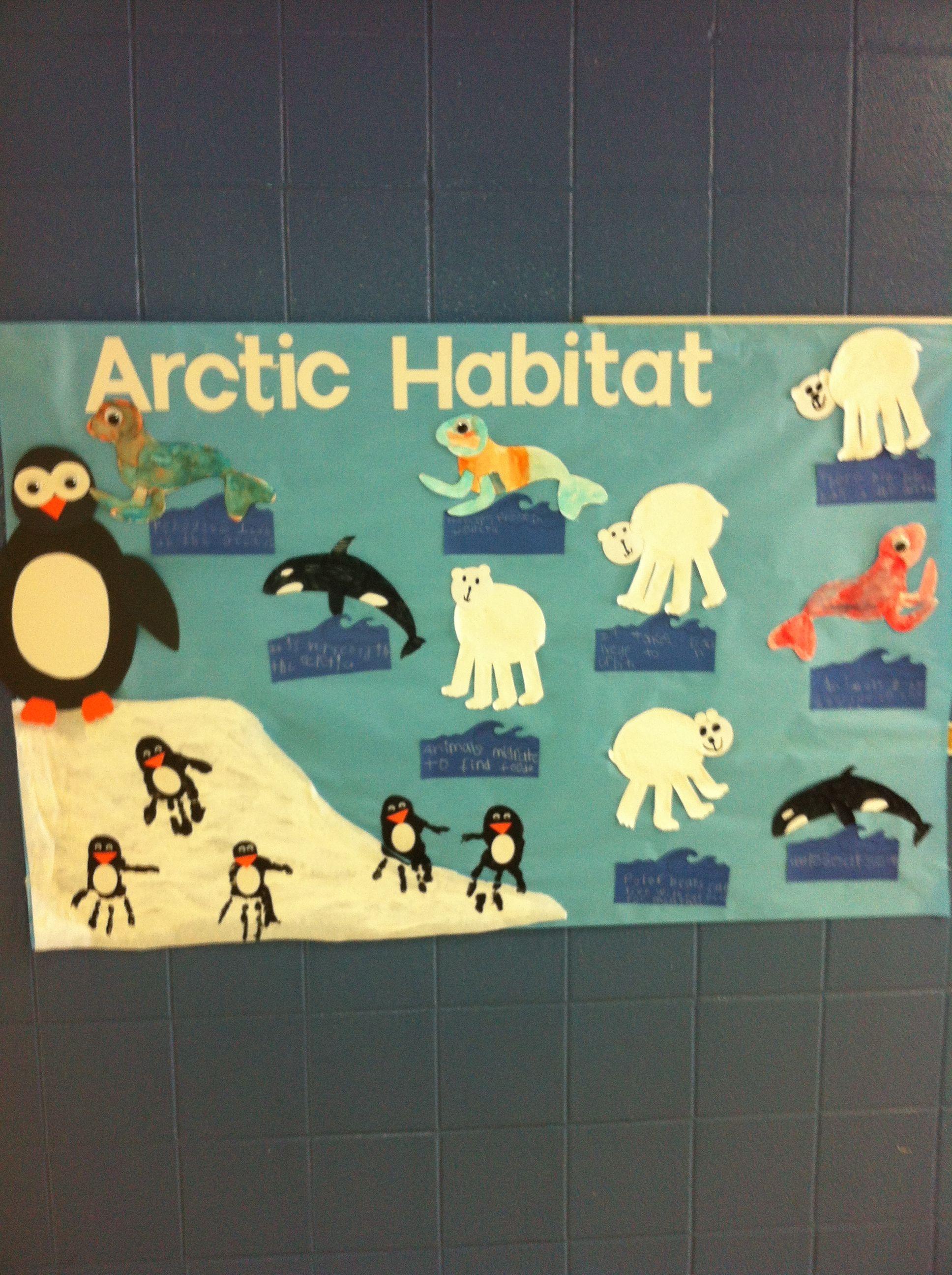 Arctic Habitat Handprint