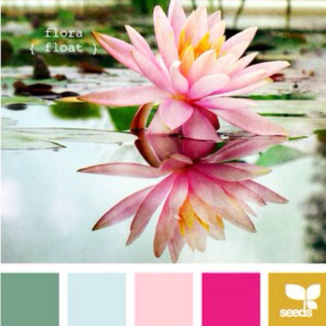 Living room colors | Watercolors - Flora & Fauna | Pinterest ...