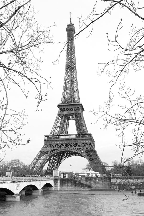 If there is anywheres in the world I would love to go, it would be the Eiffel Tower. I don't know why, but the sight of this structure has always been simply appealing to me. One day!