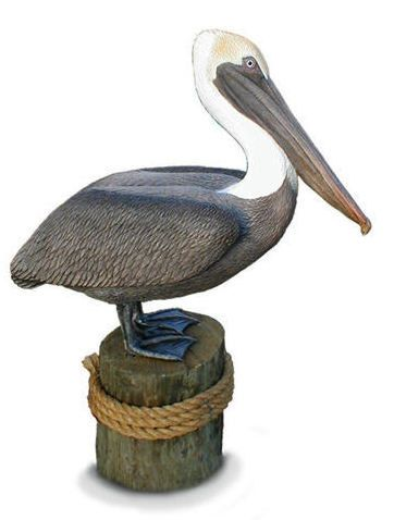 Life Size Brown Pelican Sculpture Limited Ed By Chrisdixonstudios
