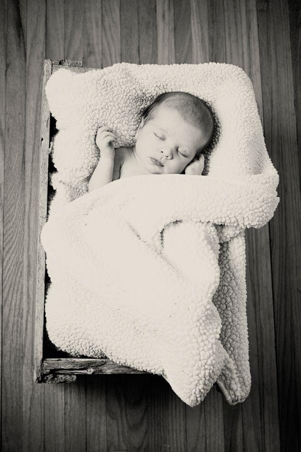 www.ebakerphotogr...    Newborn