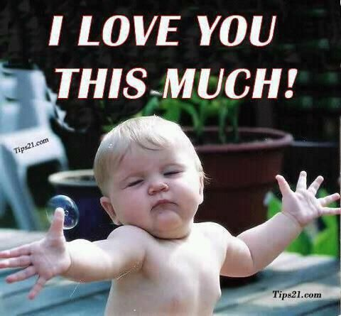 I Love You Thiiiiis Much Pic Funny Baby Quotes Cute Baby Quotes Love You Meme