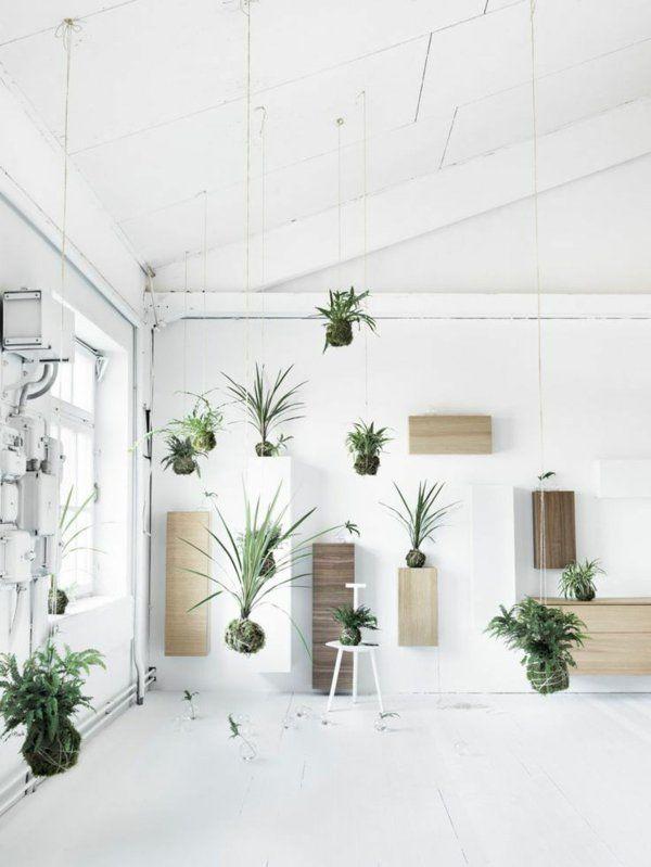 h ngende zimmerpflanzen bilder von anreizenden blumenampeln greenupyourlife pinterest. Black Bedroom Furniture Sets. Home Design Ideas