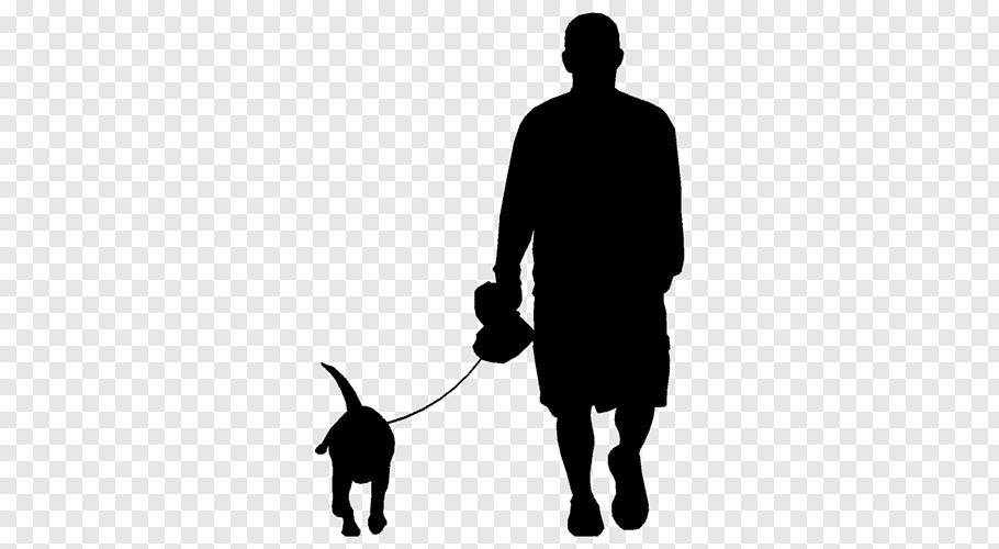 Affenpinscher Boxer Bloodhound Dog Walking Silhouette Png Bloodhound Dogs Bloodhound Dogs Bloodhound Dog Walking