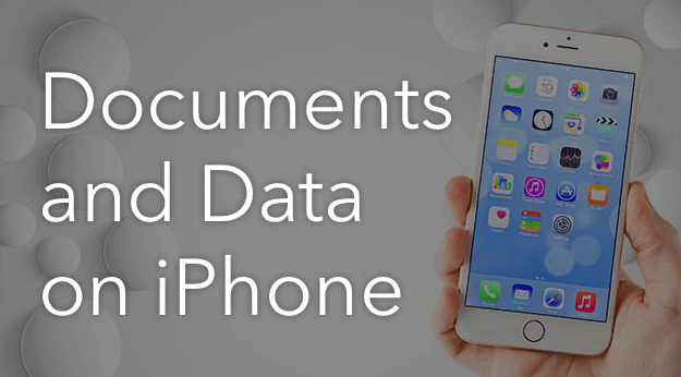 How to Delete Documents and Data on iPhone and iPad (With