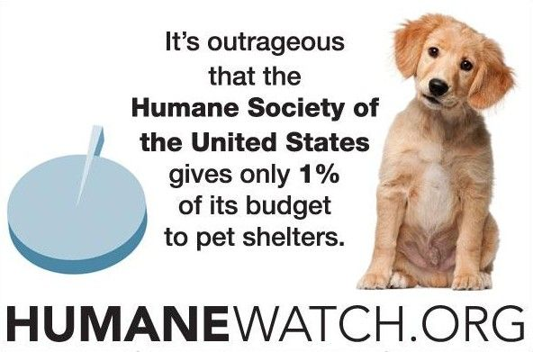 Do Not Support The Humane Society Of The United States Donate