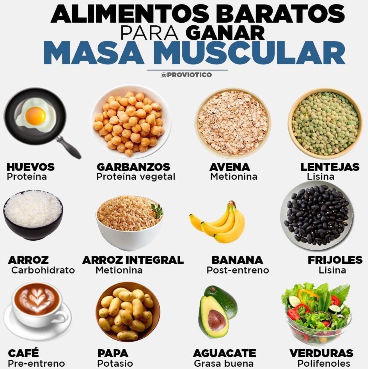 dieta rica en proteinas para ganar musculo
