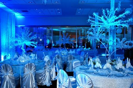 Quinceanera Decorations San Antonio Wedding Planner