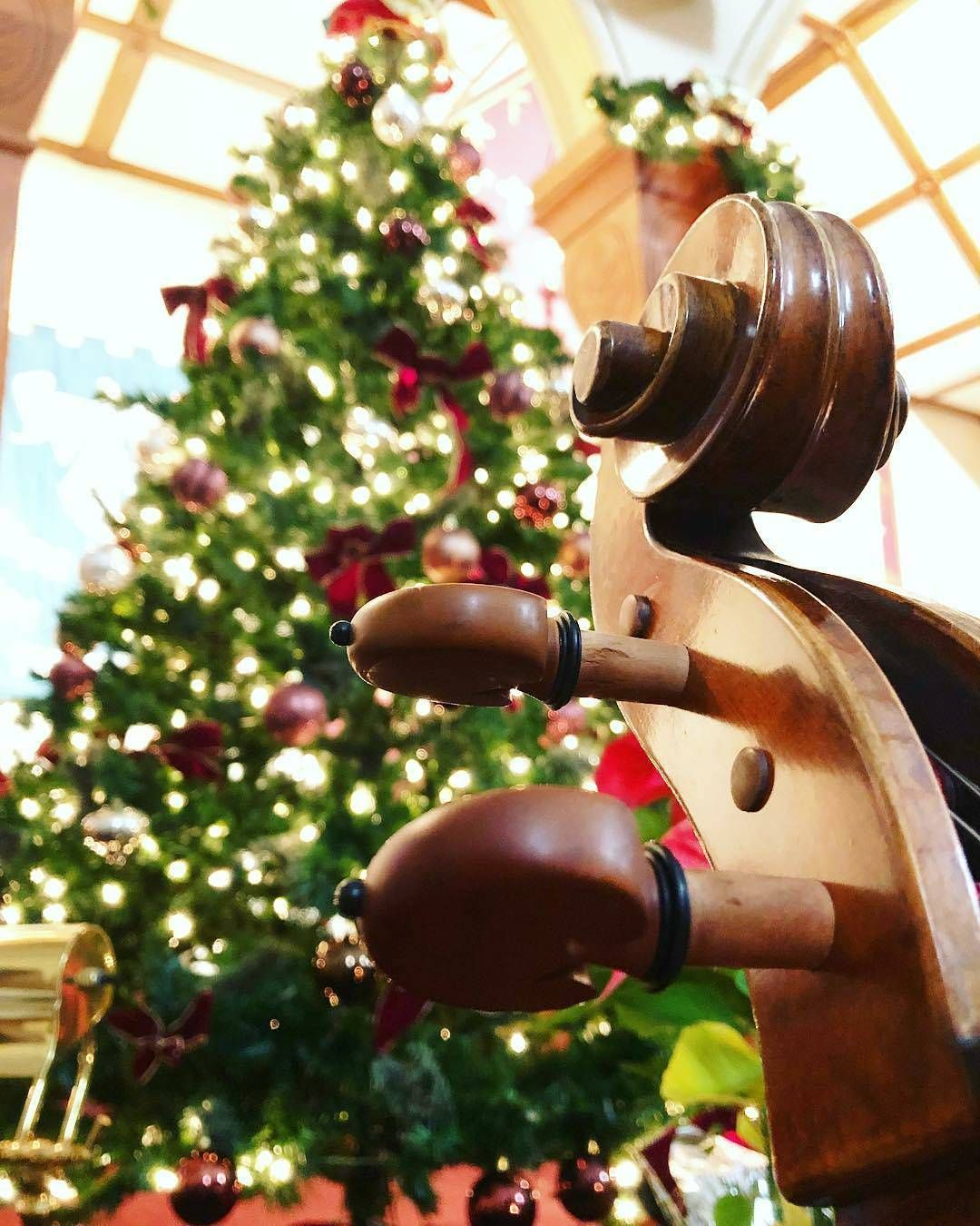 Cello And A Christmas Tree Cellistoftheworld On Instagram Pic Christmas By Neonappa21 It S That Christmas Time O Christmas Cheer Cello Christmas Time
