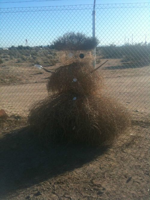 Another Version Of The Texas Snowman And I Have Made Several What Makes You Laugh Funny