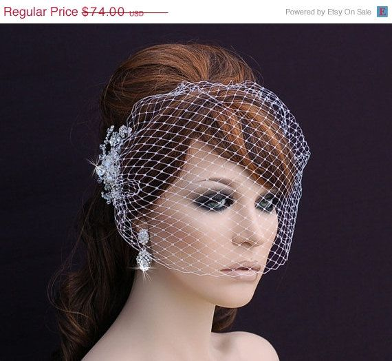 SALE Birdcage Veil and Crystal Comb Bird Cage by EleganceByKate
