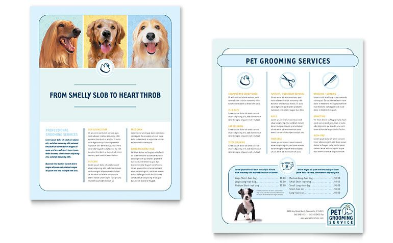 Good Example Of Newsletter Pet Grooming Publisher Templates Grooming