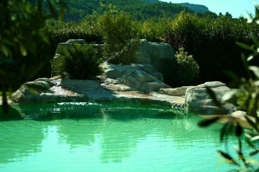 piscine naturelle cascade - Recherche Google Lu0027EAU Pinterest