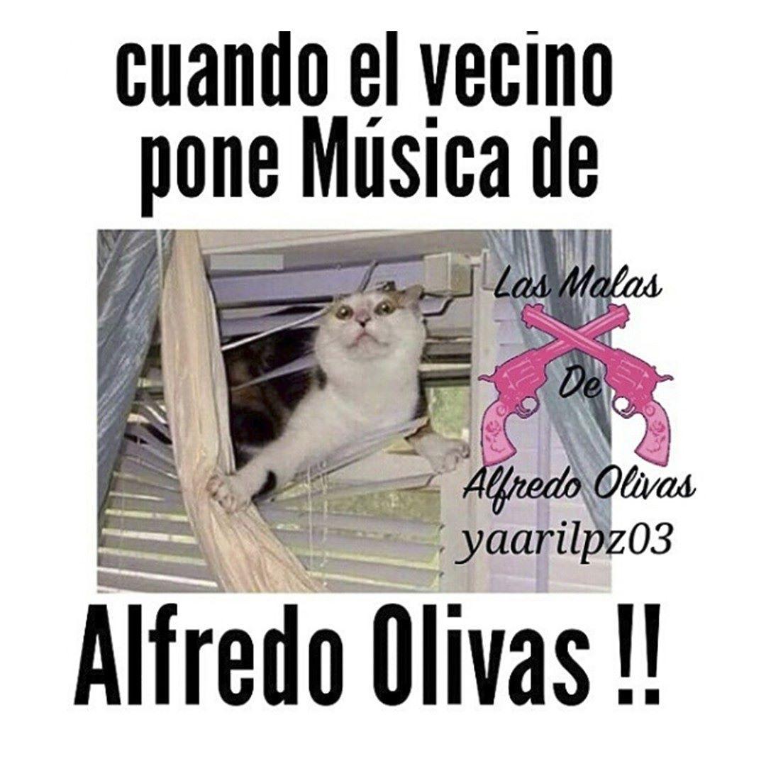 Comenta tu corrido favorito de @AlfredoOlivasOfficial #AlfredoOlivasOfficialvip