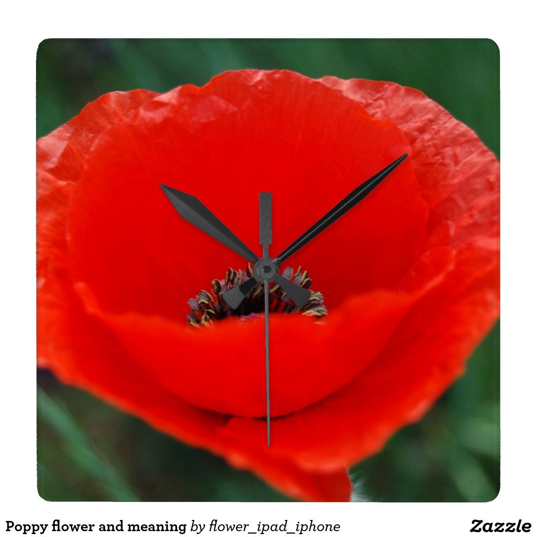 Poppy Flower And Meaning Square Wall Clock Pinterest Wall Clocks